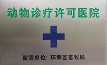 动物诊疗许可医院
